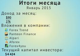 Отчет за январь 2015 инвестиции