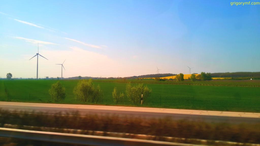 Рапсовые поля в Австрии